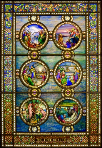 <em>Tree of Life</em> window